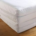 Using Bed Bug Mattress Enclosures
