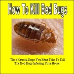 Bed Bug Cover 2