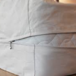 Do Mattress Encasements Work Against Bed Bugs?